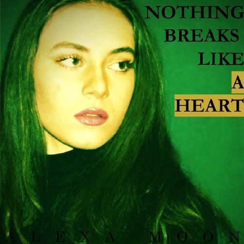 Nothing Breaks Like A Heart de Alex Amoon