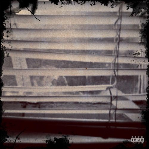 The Blinds by Brandon Blvd