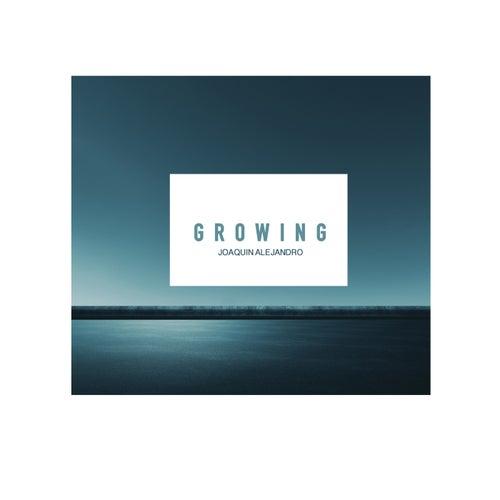 Growing by Joaquin Alejandro