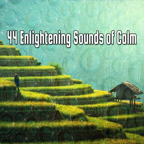 44 Enlightening Sounds of Calm de Meditación Música Ambiente