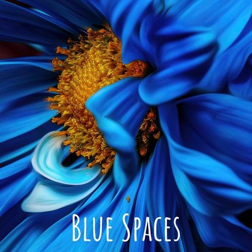 Blue Spaces de Nature Sounds Nature Music (1)