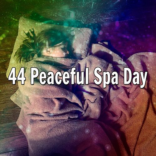 44 Peaceful Spa Day de Nature Sounds Nature Music (1)