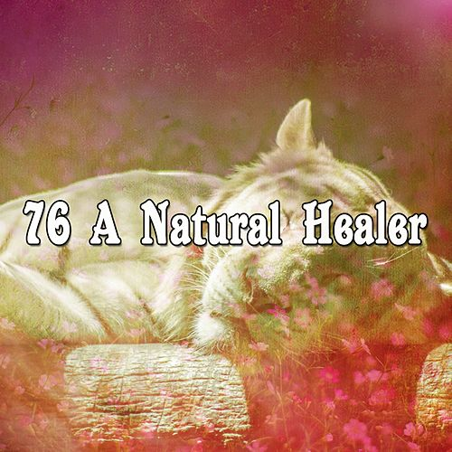 76 A Natural Healer by Calming Sounds