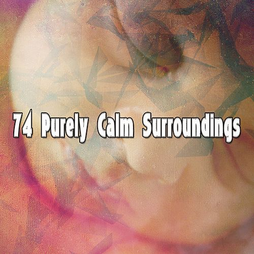 74 Purely Calm Surroundings von Best Relaxing SPA Music