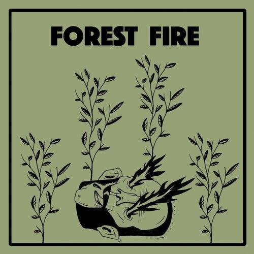 Forest Fire by Wintersleep