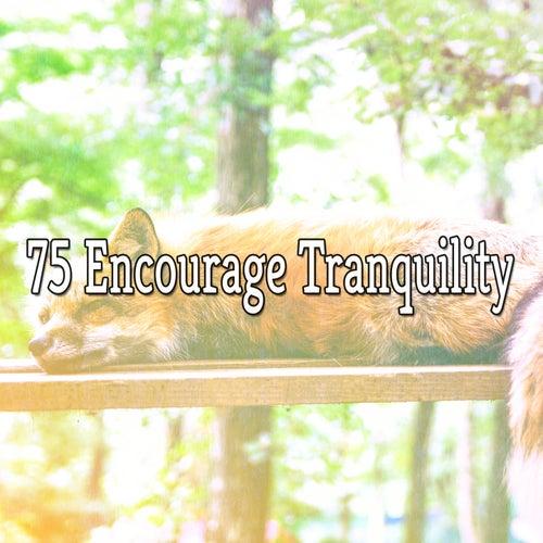 75 Encourage Tranquility de Dormir