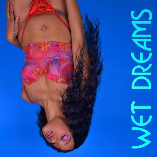 Wet Dreams von Melody Reyne