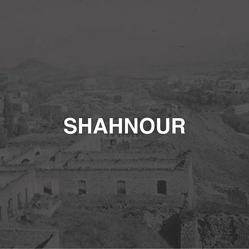 Shahnour de D-Track