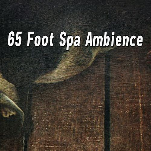 65 Foot Spa Ambience de Ocean Sounds Collection (1)