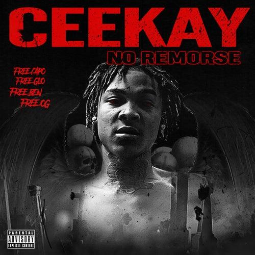 No Remorse von Cee Kay