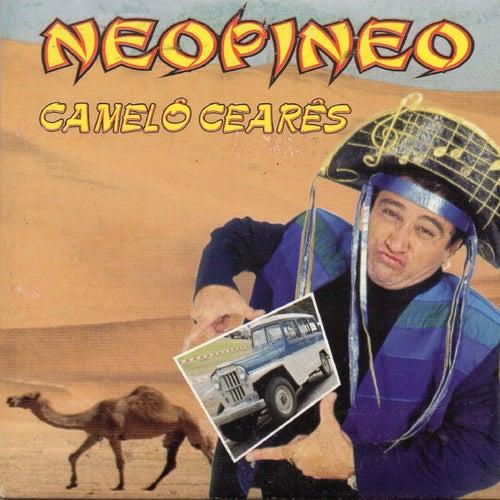 Camel?? Cear??s von Neo Pi Neo