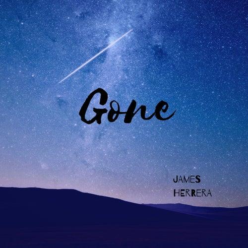 Gone von James Herrera