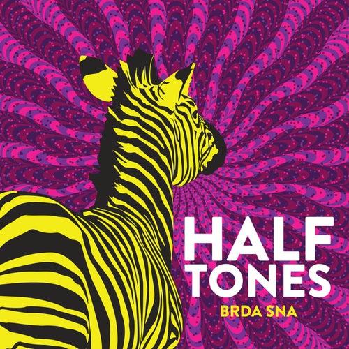 Brda sna de The Halftones