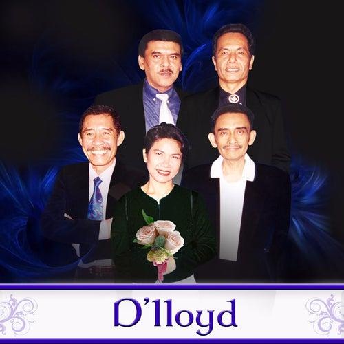 Hits D'lloyd de D. Lloyd