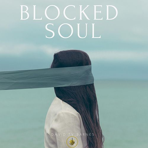 Blocked Soul by David Tv Barnes