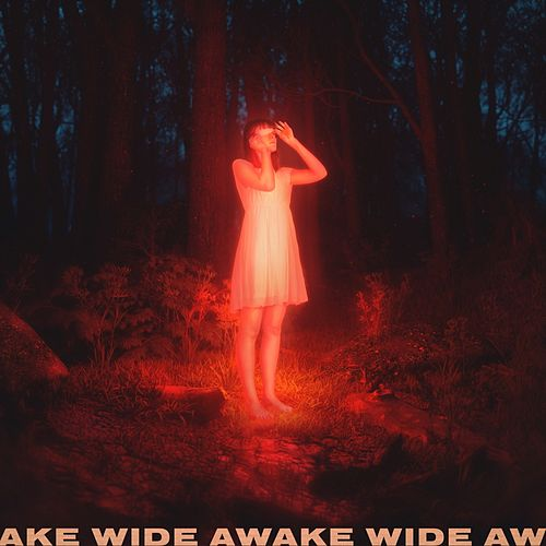 Wide Awake de Petit Biscuit