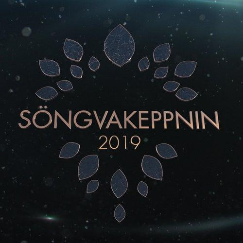 Söngvakeppnin 2019 von Various Artists