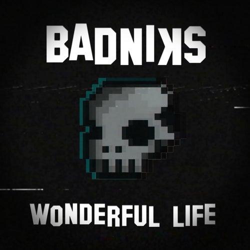 Wonderful Life by Badniks