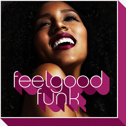Feelgood Funk von Various Artists