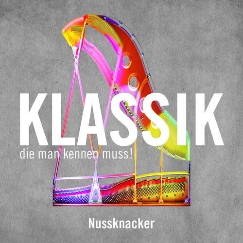 Nussknacker  / Nutcracker de Samuel Friedmann