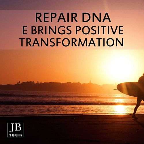 Repairs DNA & Brings Positive Transformation de Fly Project