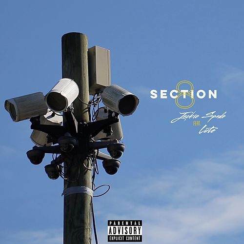 Section 8 (feat. Lute) von Jackie Spade