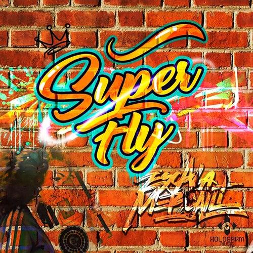 Super Fly de Escala Mercalli