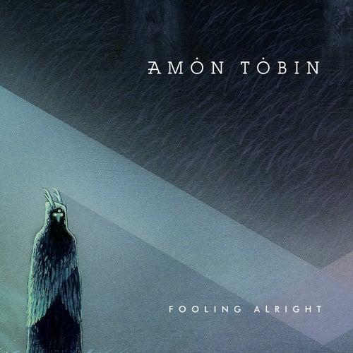 Fooling Alright von Amon Tobin