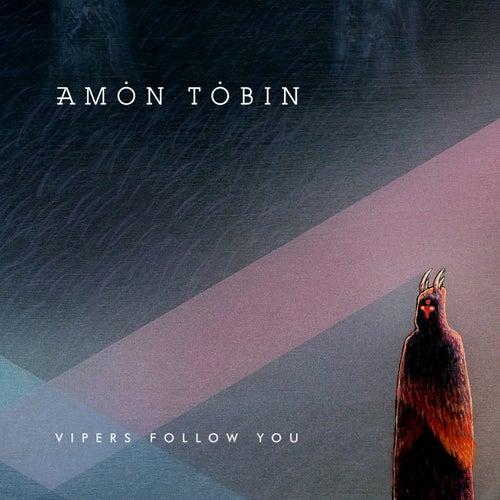 Vipers Follow You von Amon Tobin