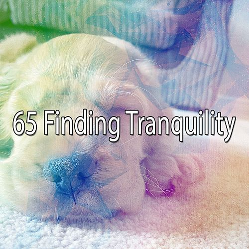 65 Finding Tranquility de Ocean Sounds Collection (1)