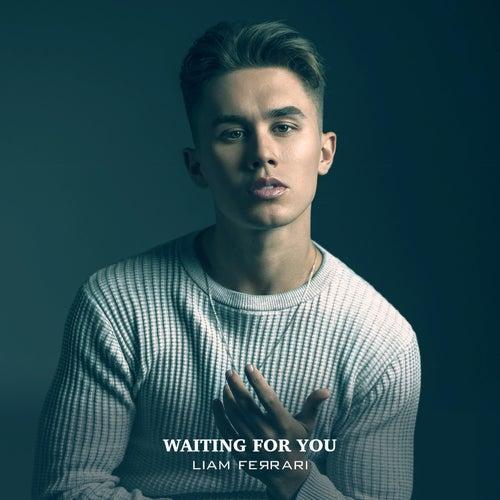 Waiting for You van Liam Ferrari