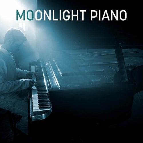 Moonlight Piano de Various Artists