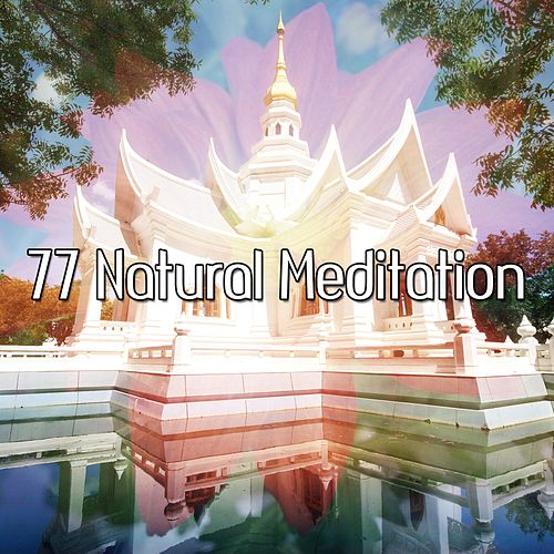 77 Natural Meditation von Yoga Music