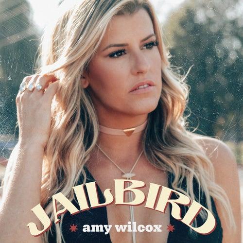 Jailbird by Amy Wilcox