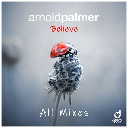 Believe (All Mixes) de Arnold Palmer