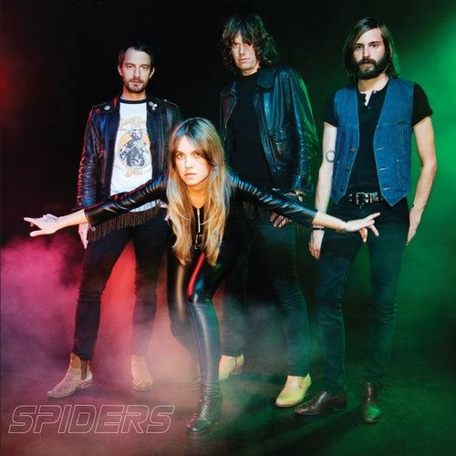 Fraction de Spiders