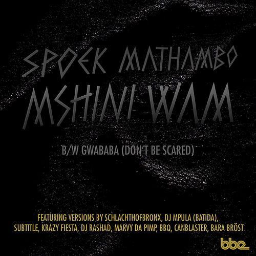 Mshini Wam / Gwababa (Don't Be Scared) von Spoek Mathambo