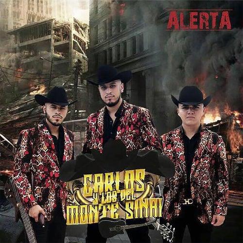 Alerta de Carlos Y Los Del Monte Sinai