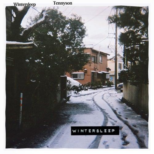Wintersleep by Tennyson