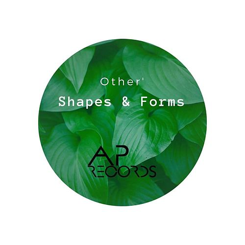 Shapes & Forms de The Other