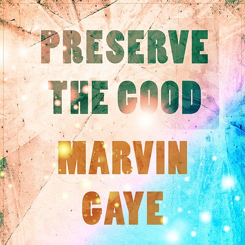 Preserve The Good by Marvin Gaye