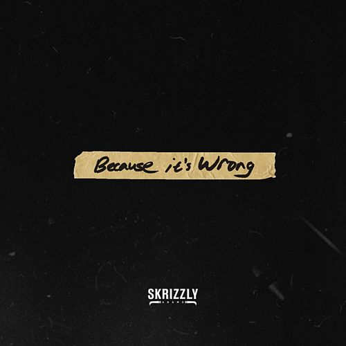 Because It's Wrong by Skrizzly Adams