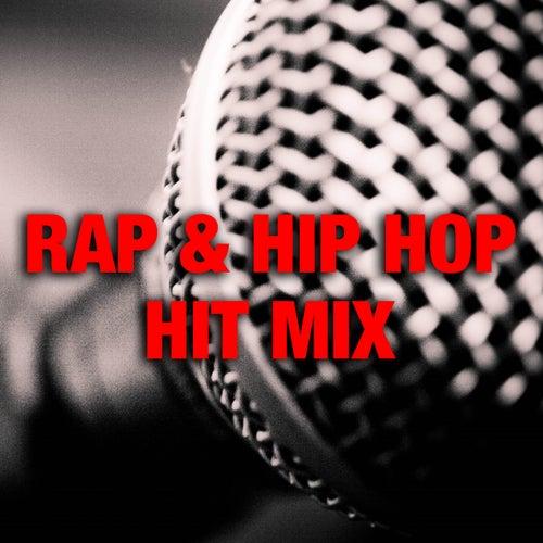 Rap & Hip Hop Hit Mix by Various Artists