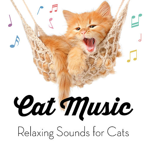 Cat Music - Relaxing Sounds for Cats by Cat Music
