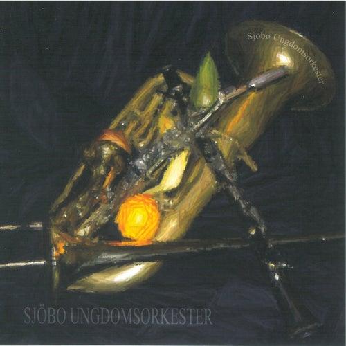 Sjöbo Ungdomsorkester 2004 de Sjöbo Ungdomsorkester