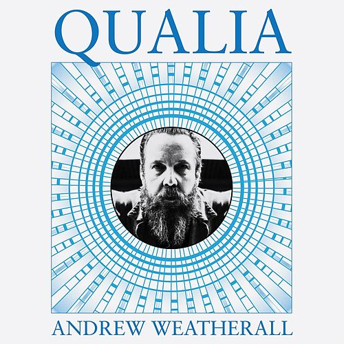Qualia by Andrew Weatherall