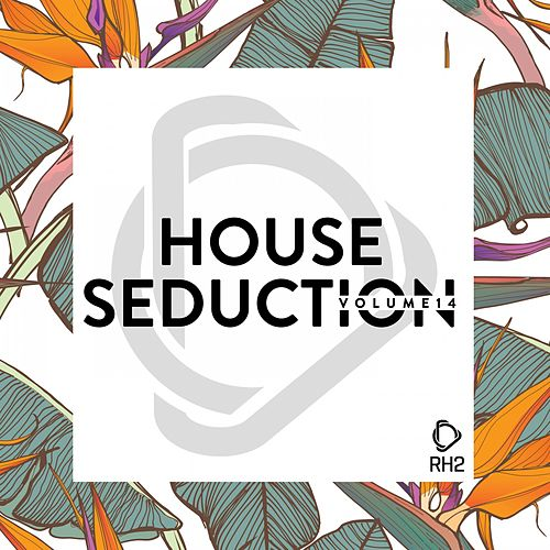 House Seduction, Vol. 14 de Various Artists