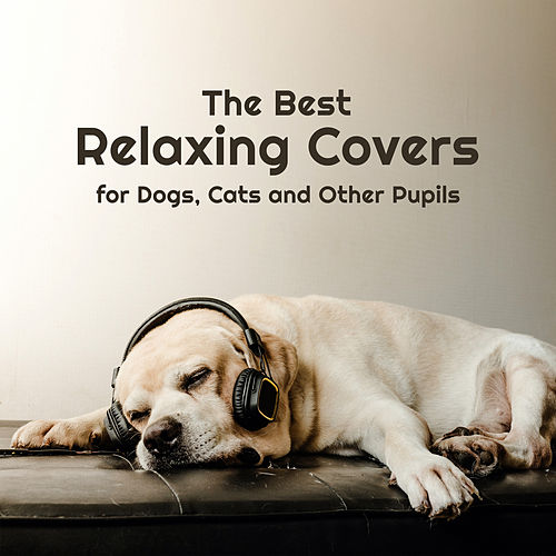 The Best Relaxing Covers for Dogs, Cats and Other Pupils: Music for Calm Down Your Pets de Various Artists