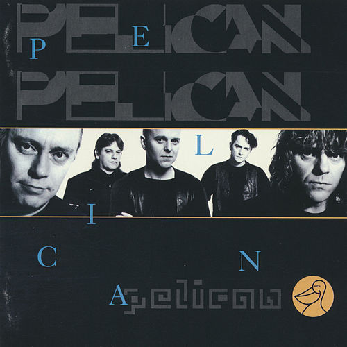 Pelican by Various Artists