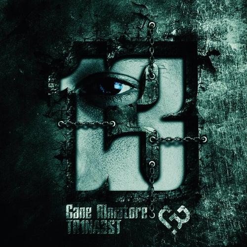 13 by Gane Rimatore